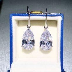 Navi Drop Earring - AS15481